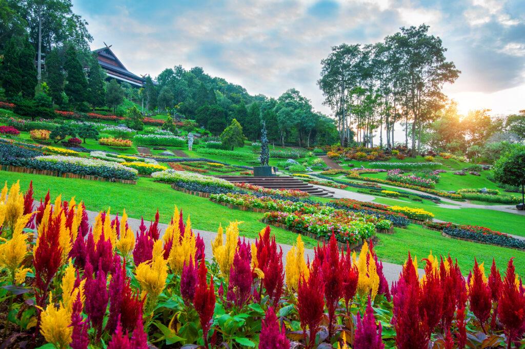 Profesyonel bahçe bakım ve düzenleme hizmetimiz ile sizlere daha huzurlu ve sağlıklı bir ortam sunuyoruz.